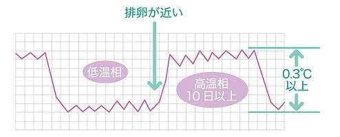 基礎体温の測定